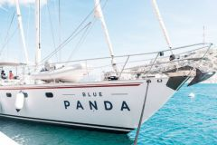The Blue Panda, the WWF sailboat
